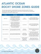 Zones Guide